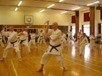 Nunchaku course 2008 7.JPG